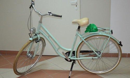 идентифицированный на границе велосипед