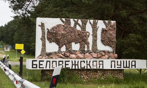 Беловежская пуща знак