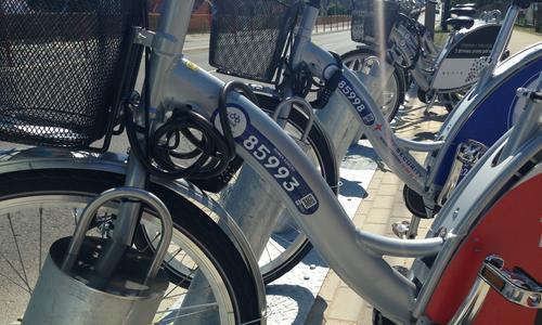номер велосипеда для аренды в белостоке