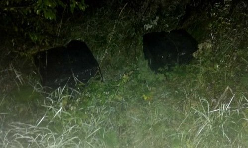 коробки с белорусскими сигаретами брошенные в лесу на границе
