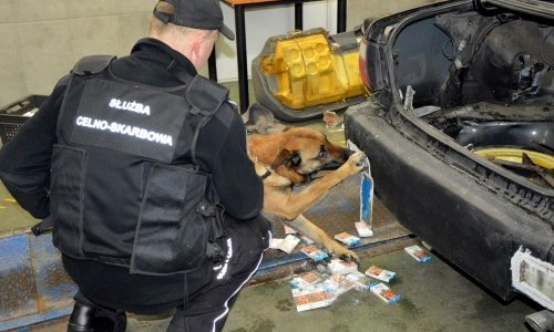 служебная собака нашла сигареты в 4 машинах