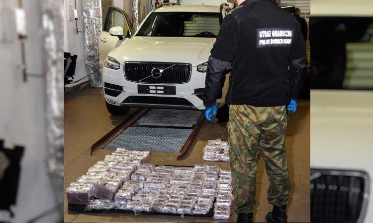На польско-белорусской границе задержали сразу двух из России с 200 кг гашиша