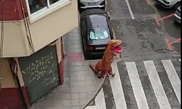 человек в костюме динозавра на улице