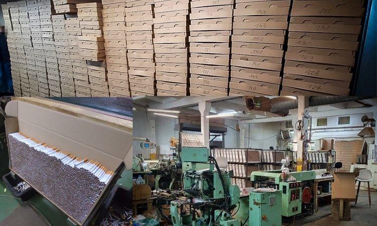 Нелегальные фабрики сигарет в Польше
